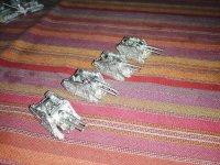 petit lot divers Mini_210324114407574444