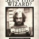 Wanted Wizards