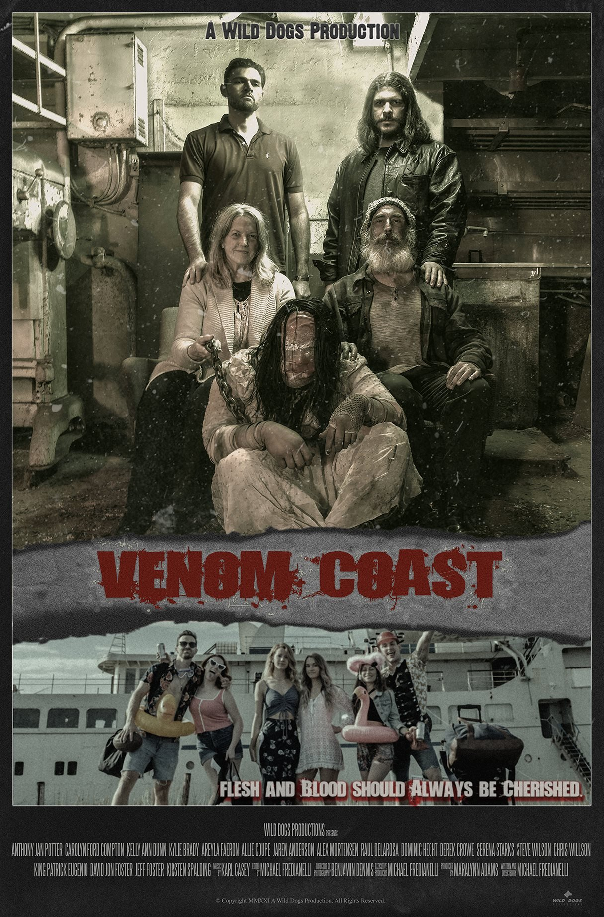 Venom Coast poster image
