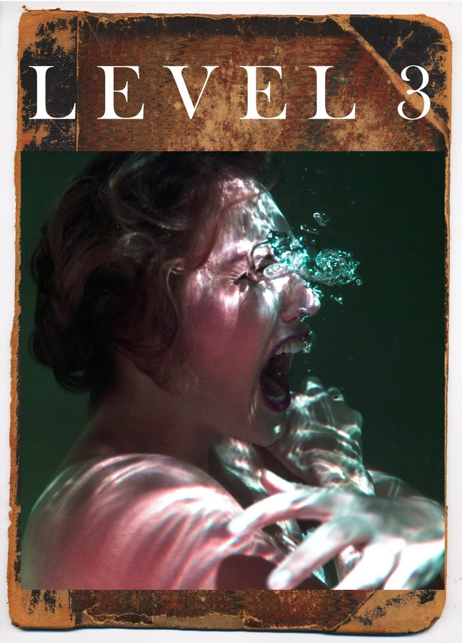 Level 3 poster image
