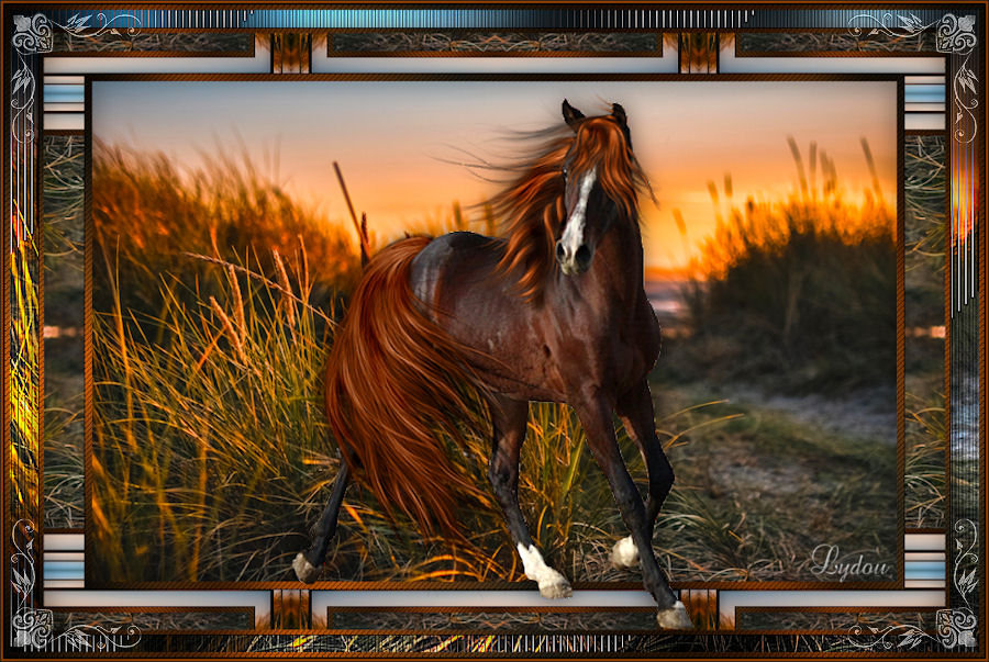 Horse 210416125042309688