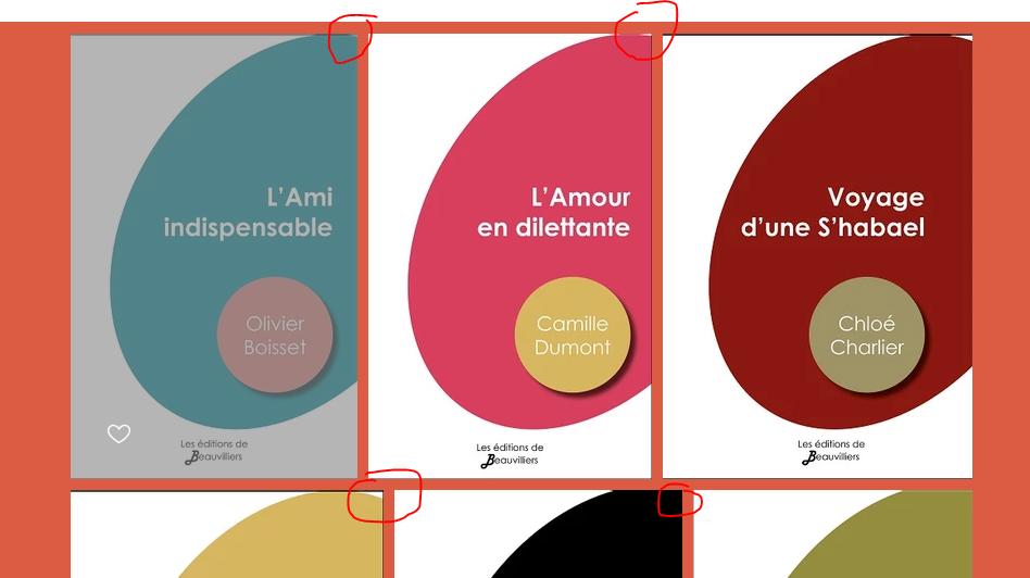 [Avis ME] Editions de Beauvilliers 210422121303457156