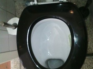 La conférence de Mireille sur les WC dans le monde 21051505174597513