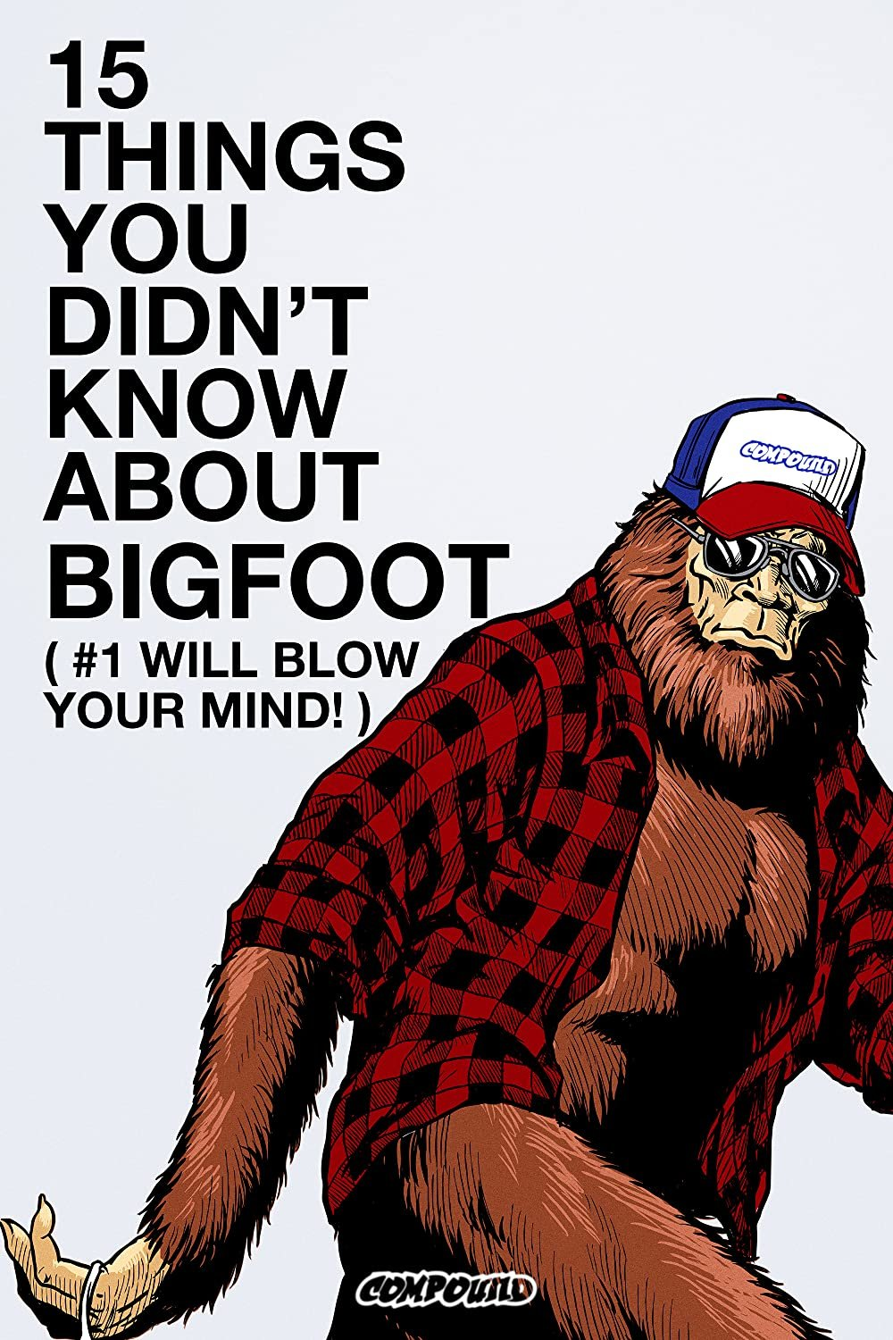 The VICE Guide to Bigfoot poster image