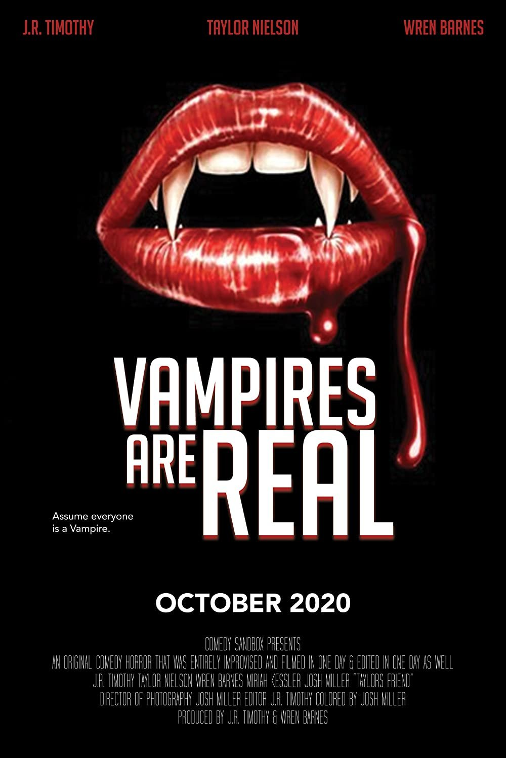 Vampires Are Real poster image