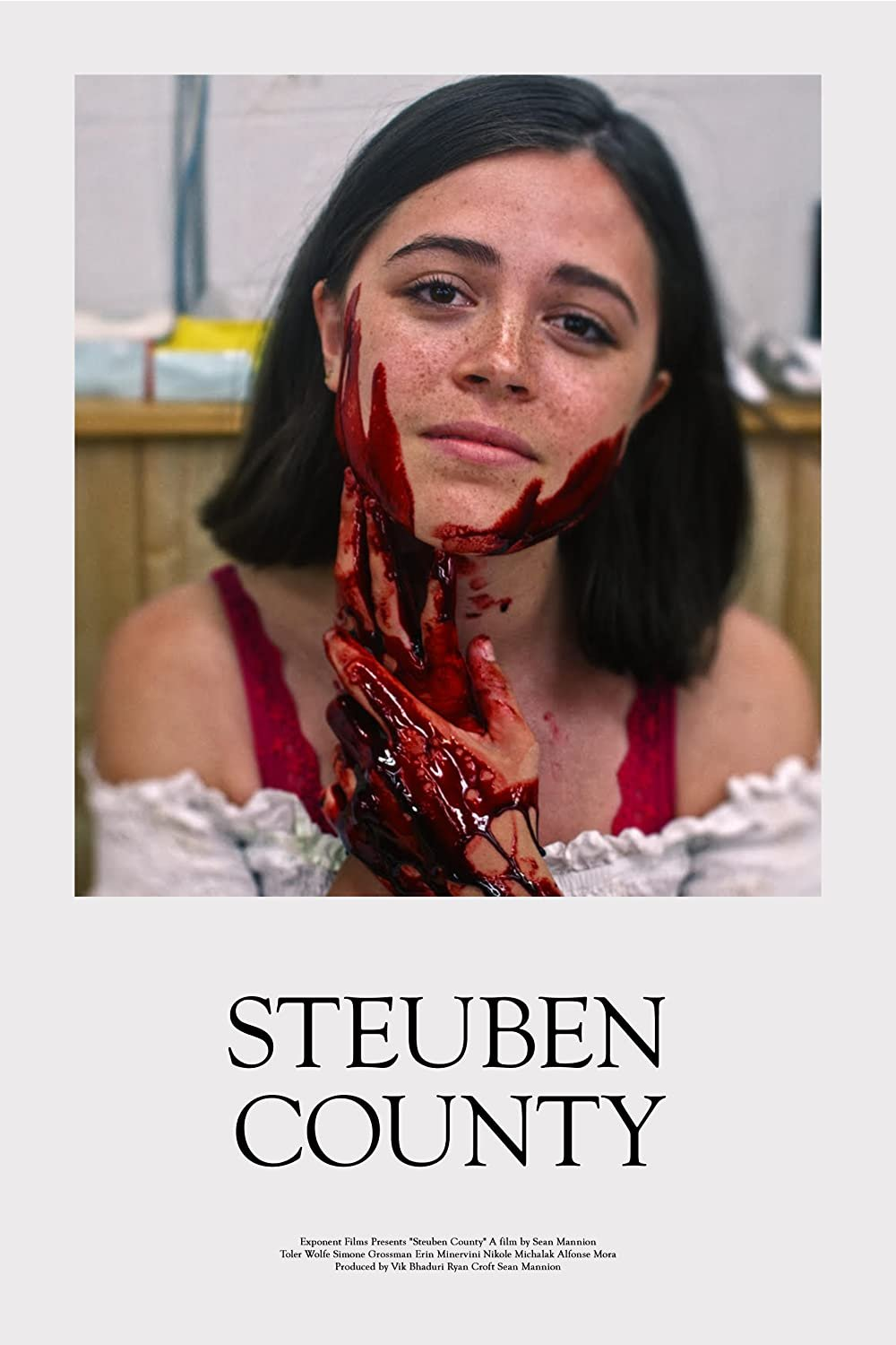 Steuben County poster image