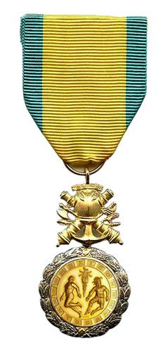 Médaille des citoyens de valeurs