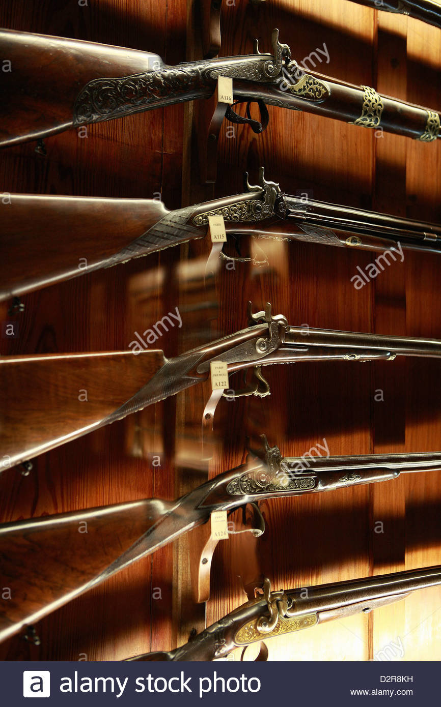Achat arme de catégorie D en Italie  210625100541251157