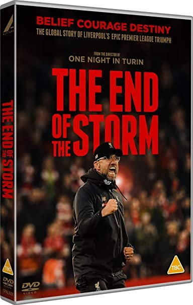 The End of the Storm poster image