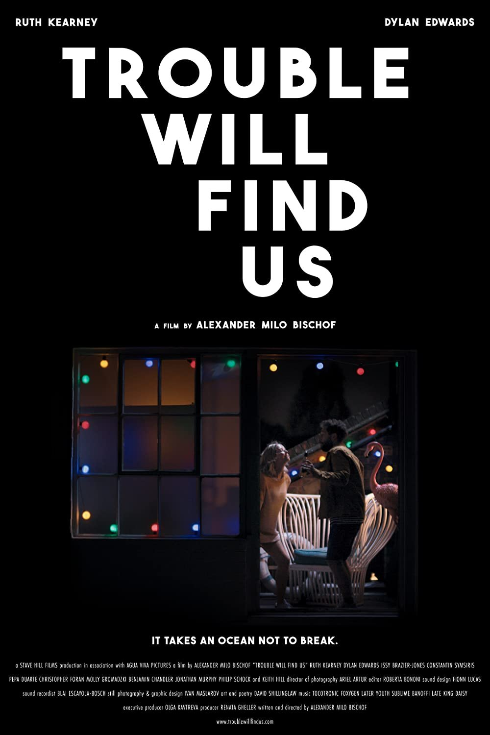 Trouble Will Find Us poster image
