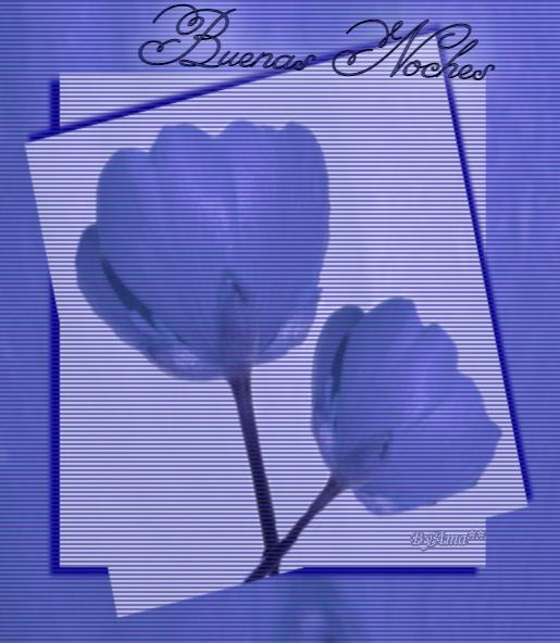 Buenas Noches - Página 32 210806114954900489
