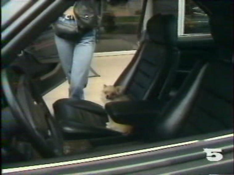 MERCEDES 560 SEC AMG DE JOHNNY HALLYDAY ( 1988 ) 210814030705675414