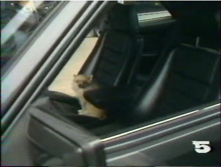 MERCEDES 560 SEC AMG DE JOHNNY HALLYDAY ( 1988 ) 210814030705945014